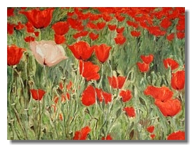 Flower oil painting, Red poppies, Liron Sissman, Individualism, metaphorical nature