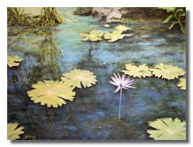 Water Lilies oil painting, art for healthcare, art for medical centers, art for healing, Liron Sissm