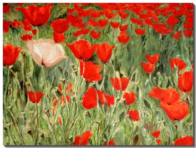 Dare be You – Red Poppies