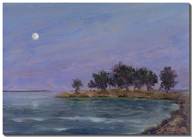 Cove Island at Dusk II